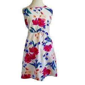 Lands' End Shift Dress Plus Sz 18 Pink Blue Floral